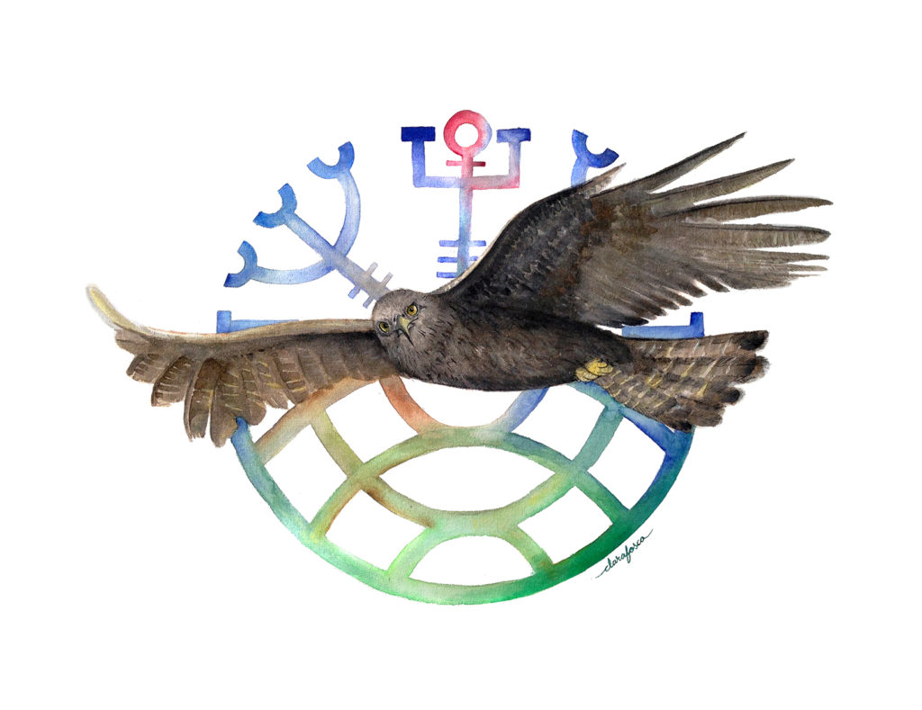 Eagle Watercolour