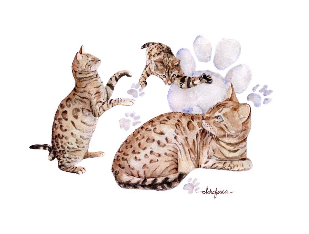 Cat watercolour